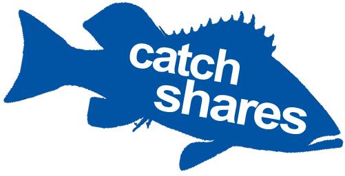 Catch Shares Logo 2