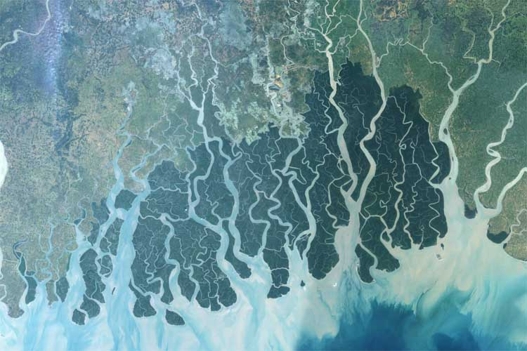 Long-Term carbon storage in Ganges basin may portend ...