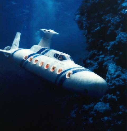 Nature inspires new submarine design (Constantine