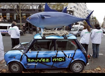 Closure of this year's Spanish and French Bluefin Tuna purse seine ...