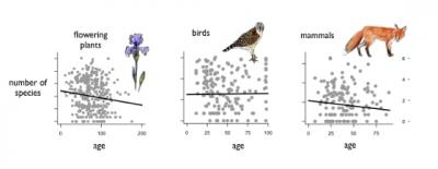 Relationships between Age and Species Richness