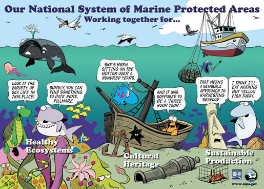 When Is A Marine Protected Area Really A Marine Protected