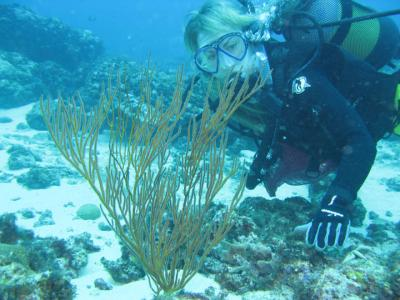 Research Under Water