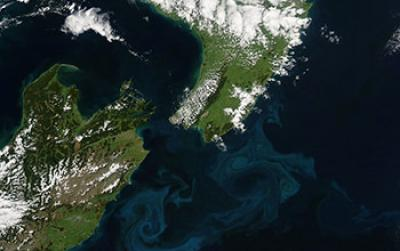Aerial Image of Blooms of Phytoplankton Forming Sea-Swirls near New Zealand Coast