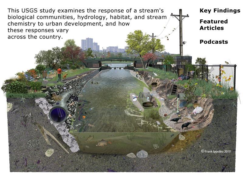 Effects of Urbanization on Stream Ecosystems