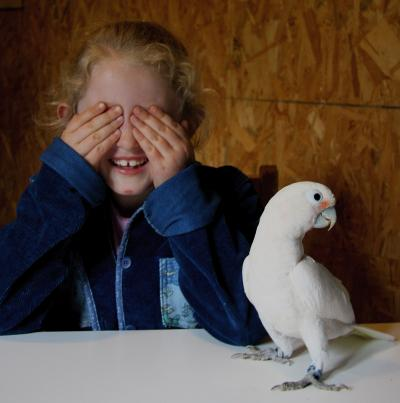 Child and Cockatoo