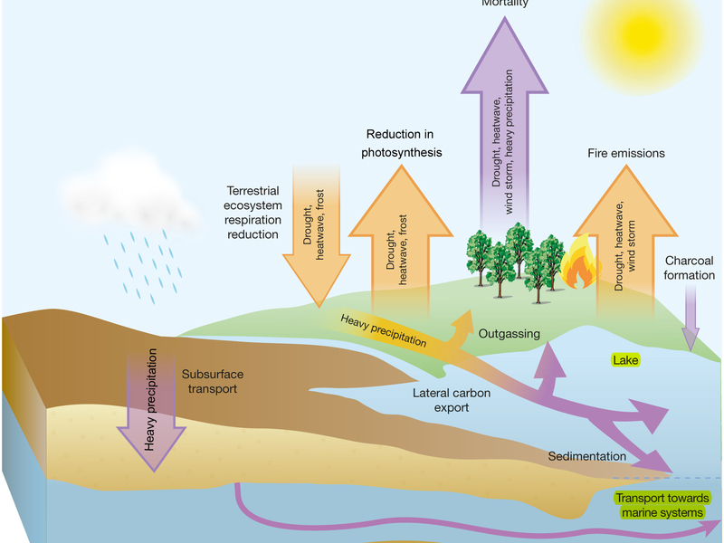 Extreme weather climate and the carbon cycle constantine extreme ccuart Gallery