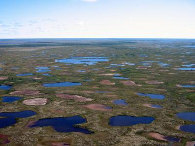 Desiccated Lakes in Northern Canada