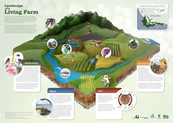 Sustainable Agriculture With Profitable Farming And