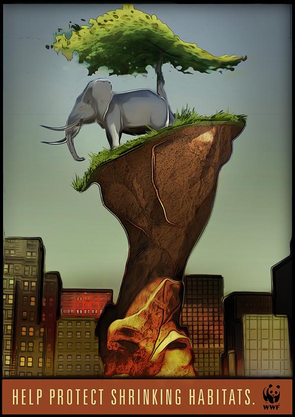 Major World Ecosystems