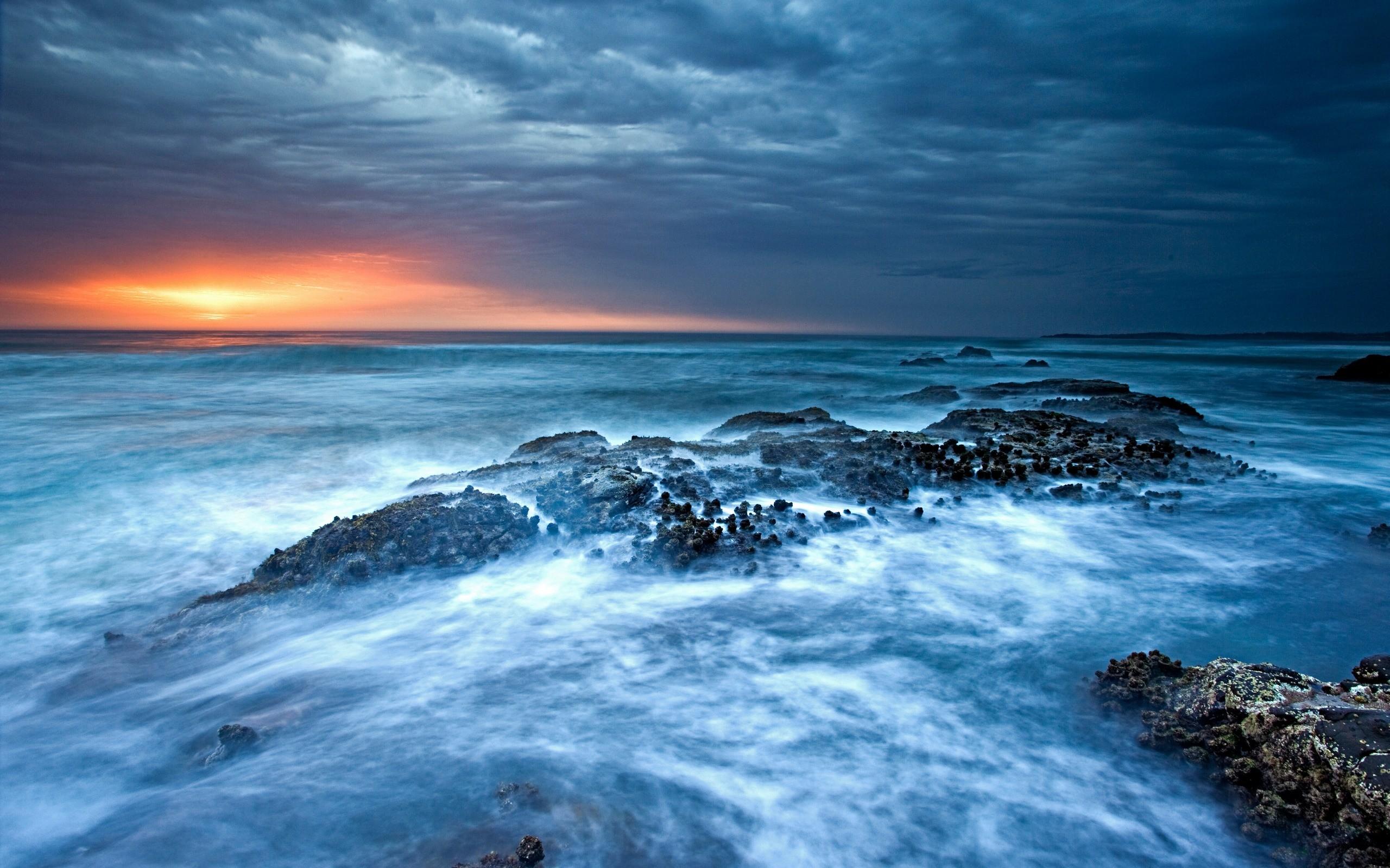 decoding ocean signals constantine alexander s journal  a