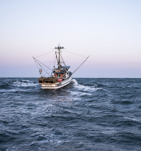 Dangerous fishing may be endangered constantine alexander for Deep sea fishing half moon bay