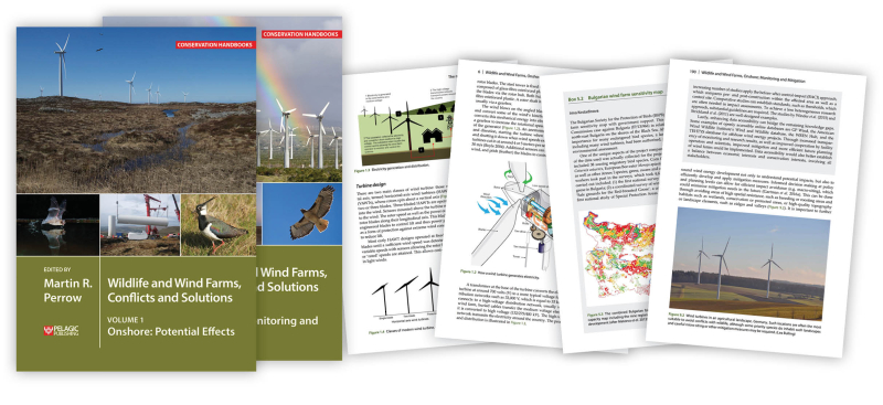 Wildlife and Wind Farms Joint Page Spread