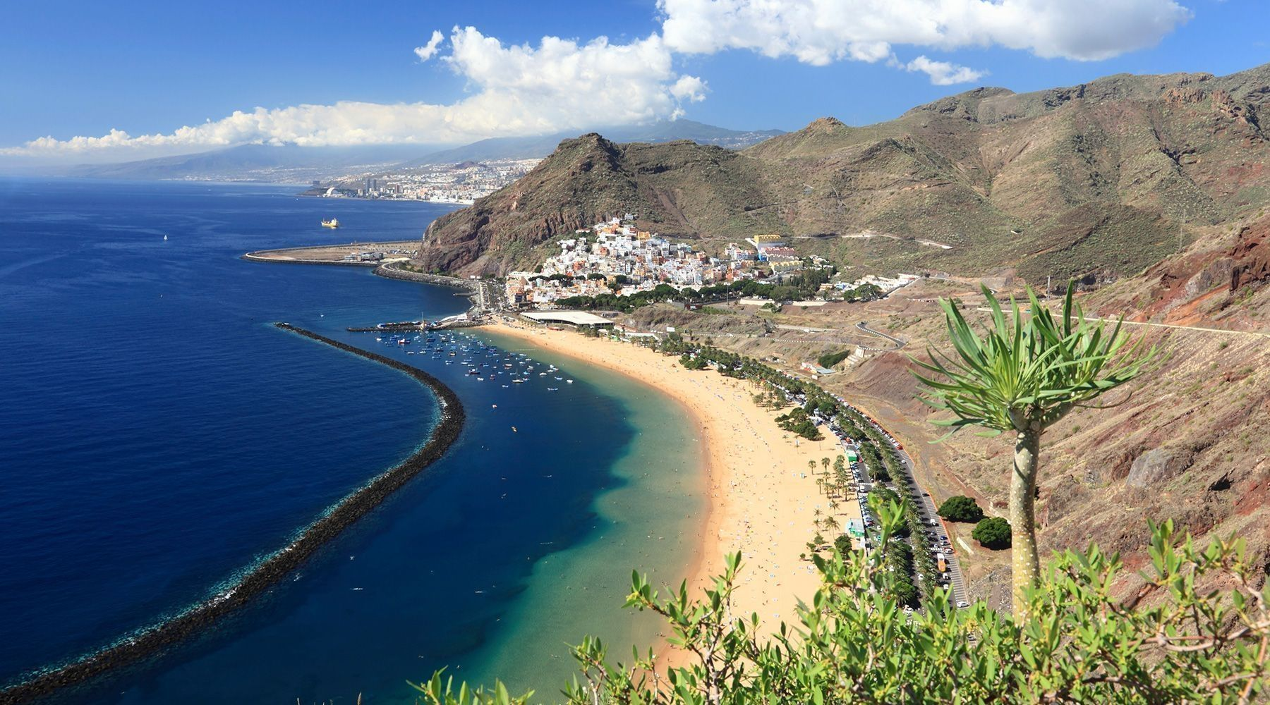 a carbon free future for the canary islands possible by 2050
