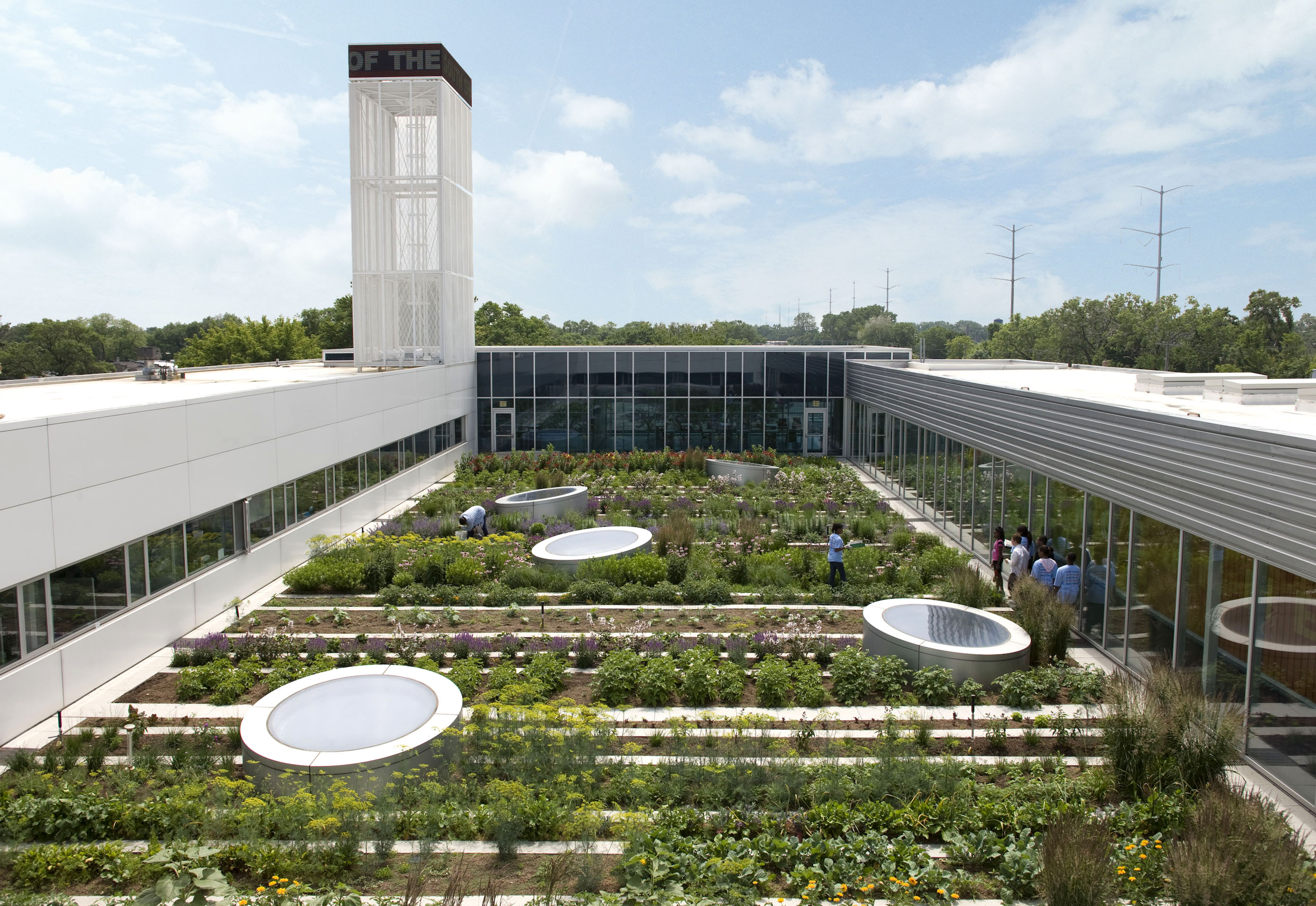Rooftop Gardens Could Grow Three Quarters Of City S Vegetables