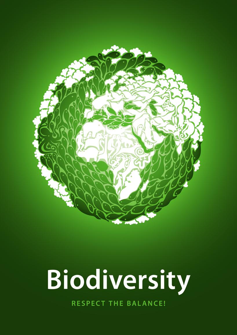 Biological Diversity Wallpaper Biodiversity